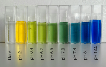 Bromothymol_blue_colors_at_different_pH.png